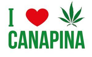 Il logo della manifestazione I love Canapina